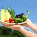 「朝採り野菜」が美味しい理由