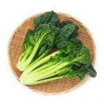 伝統野菜in山形   雪菜
