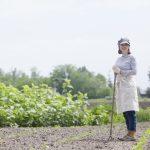 注目の農業女子とは