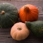知らなかった!かぼちゃの品種はこんなにある
